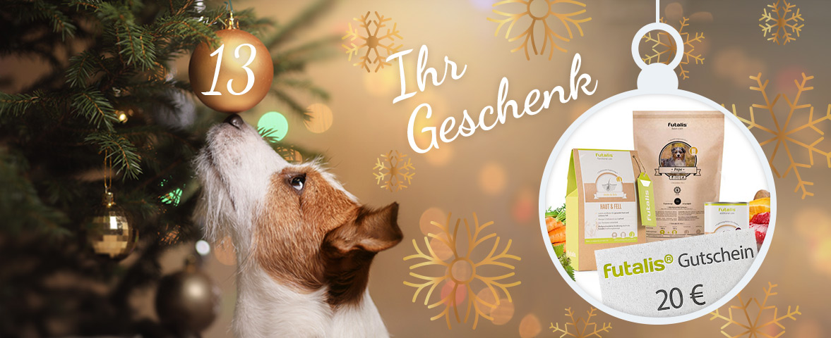 Adventskalender - Türchen