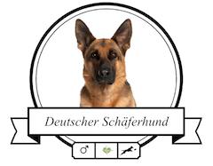 Deutscher Schäferhund Futter für rassespezifische Krankheiten