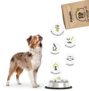 Gute Hundenahrung für eine optimale Nährstoffversorgung