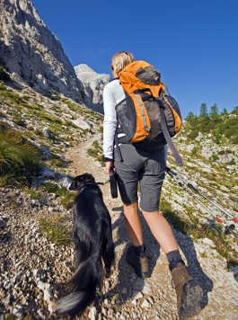 Dogtrekking - Wandern mit Hund