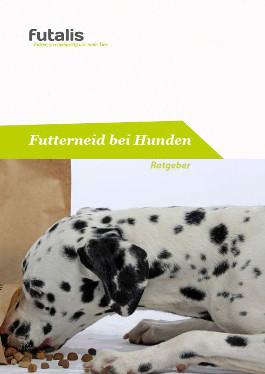 Futterneid bei Hunden