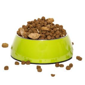 Verdaulichkeit von Fertigfutter und Rohfutter