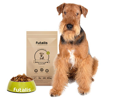 Airedale Terrier Futter