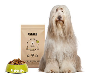 Bearded Collie Futter