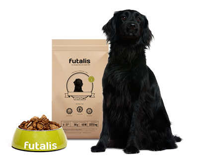 Flat Coated Retriever Hundefutter
