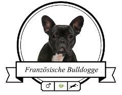 Französische Bulldogge Futter für rassespezifische Krankheiten