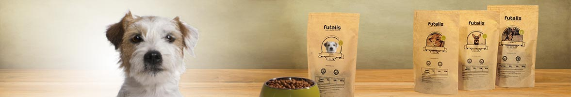 Parson Russell Terrier Header