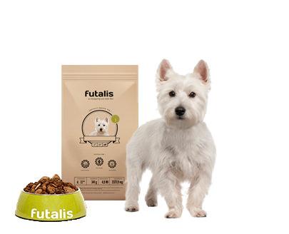 West Highland White Terrier Futter