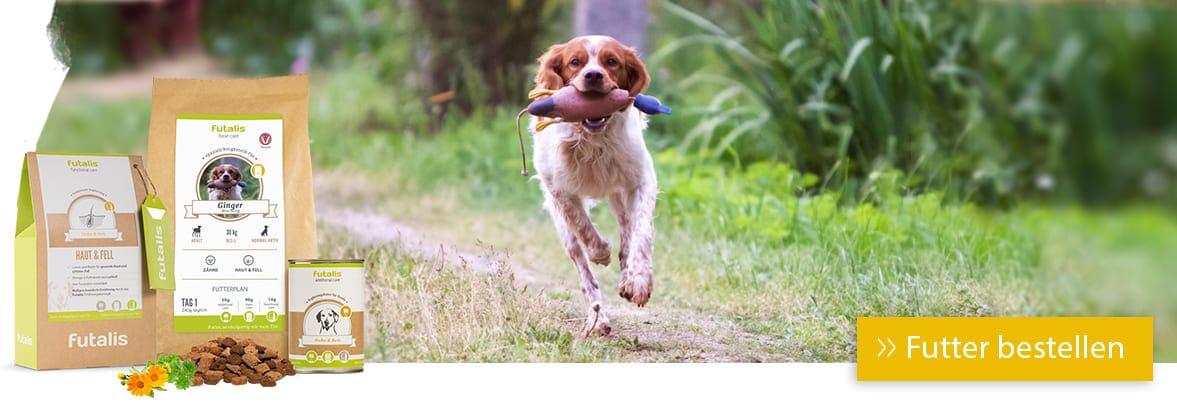 Futter für mittelgroße Hunde