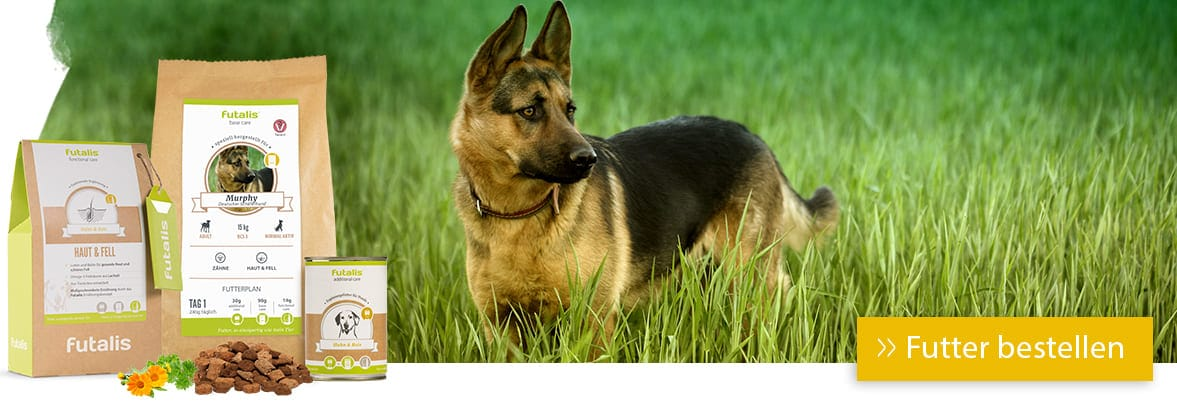 Rassefutter Schäferhund