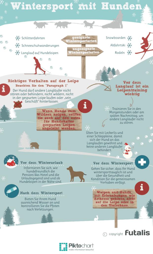 Wintersport mit Hunden