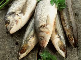 Vitamin D im Fisch
