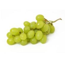 Weintrauben - toxische Wirkung auf Hunde