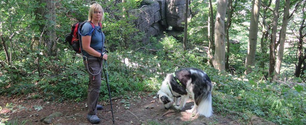 Wandern mit PTBS Assistenzhund Matze