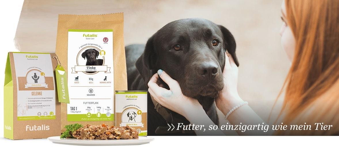 Knoblauch und Zwiebeln für Hunde