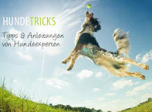 Hundetricks E-Book