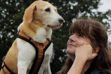 Hundeblog des Monats September 2017