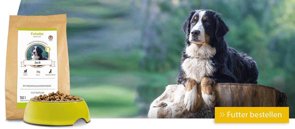 Diätfuttermittel für Ihren Hund