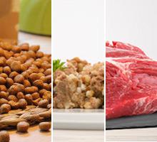 Vergleich Fütterungsformen